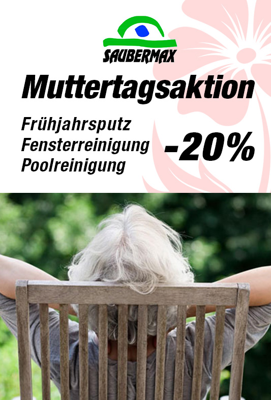 fensterputzen aktion